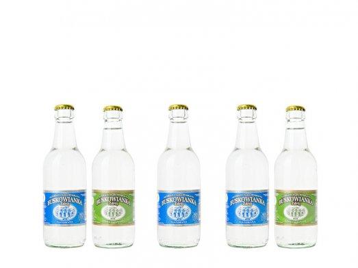 Woda Mineralna Buskowianka Zdrój 0,33L